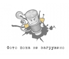 1 ступень редуктора Рысак